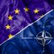 Adjusting the Multilateral System to Safeguard Dutch Interests FI