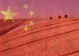 landbouw china